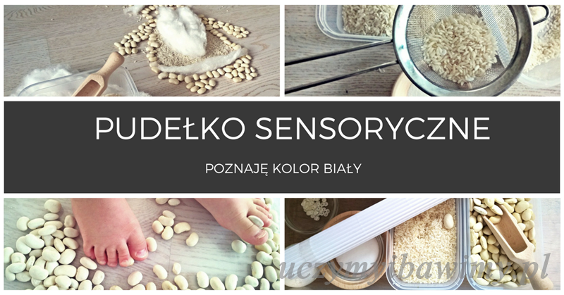 Pudełko sensoryczne | poznawanie kolorów | poznaje kolor biały