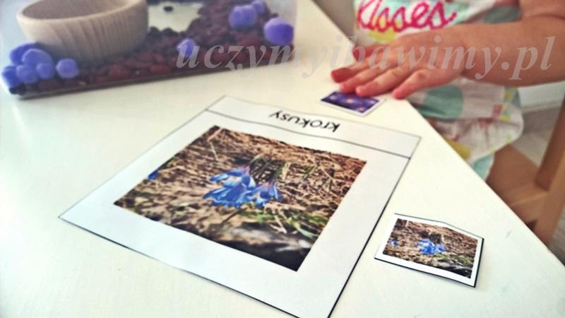 Montessori i karty trójstopniowe