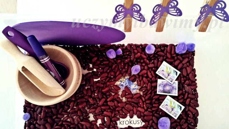 pudełko sensoryczne - kolory