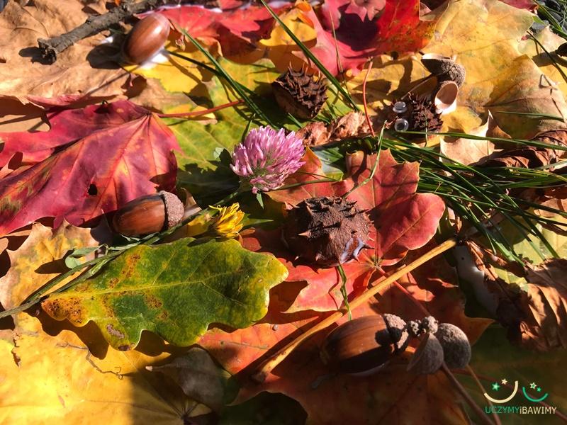praca-plastyczna-jesien