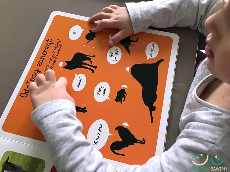100-zwierzat-ksiazki-dla-dzieci