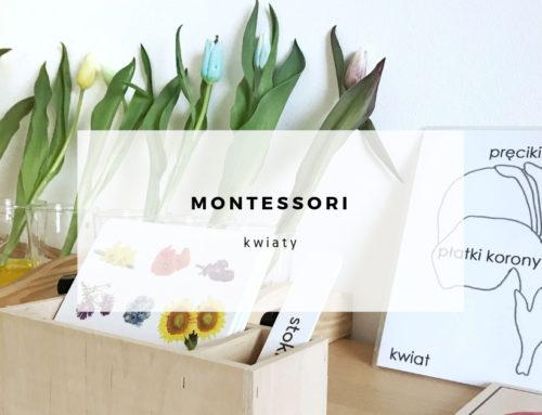 Kwiaty w edukacji Montessori