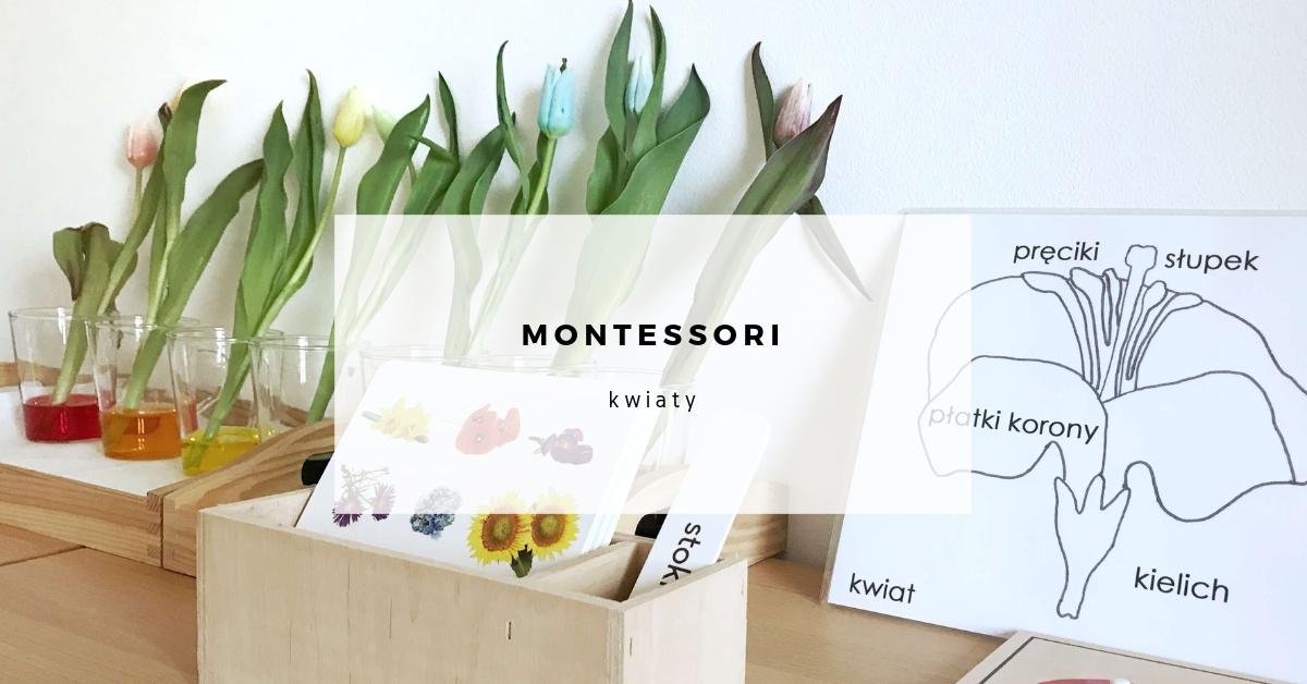 montessori-kwiaty