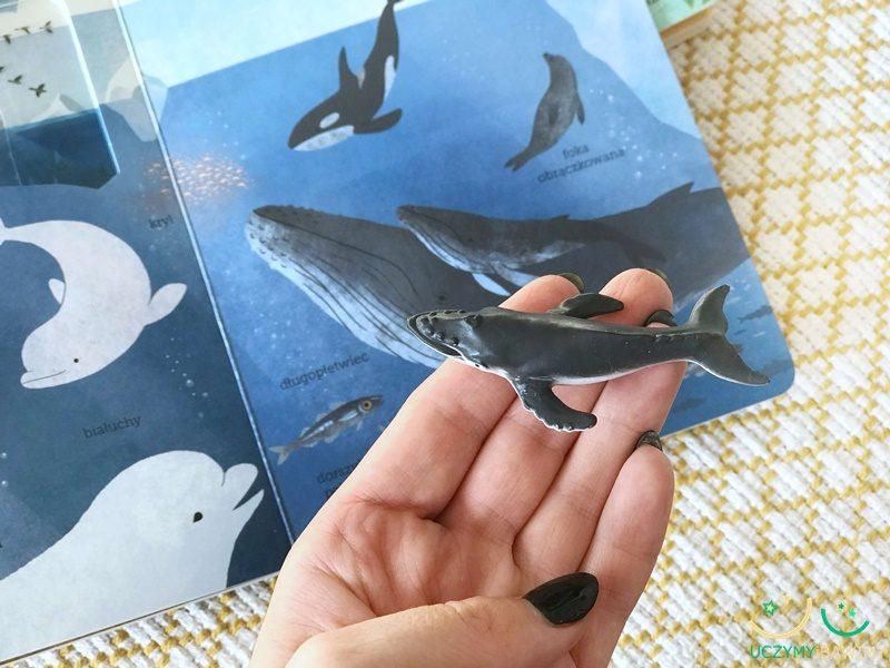 w-oceanie-ksiazki-dla-dzieci