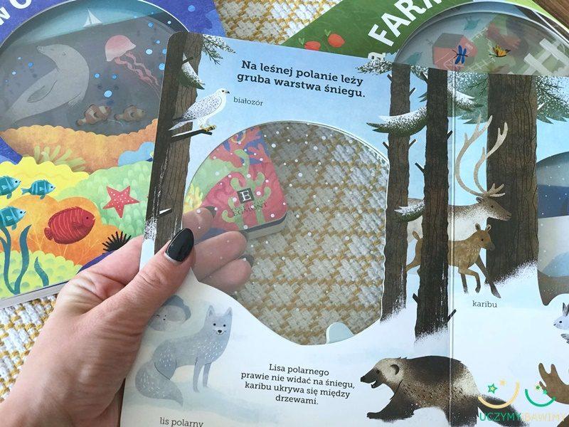 arktyka-ksiazki-dla-dzieci