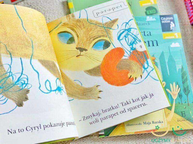 czytam-sobie-koty-i-kotki