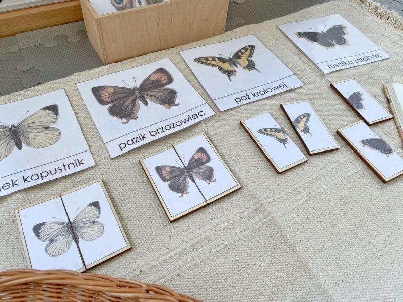 puzzle-z-motylami